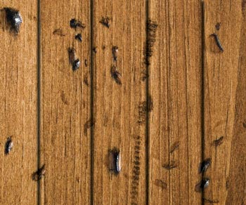 rustic pine distressed
