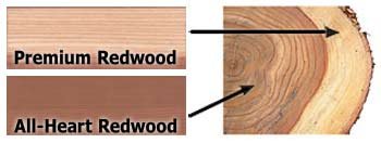 WoodSample_AH_TreeCore-rt.jpg